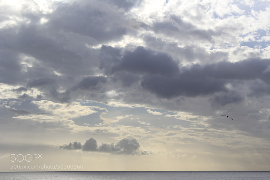 Photograph Horizon by Khalil Hammami on 500px