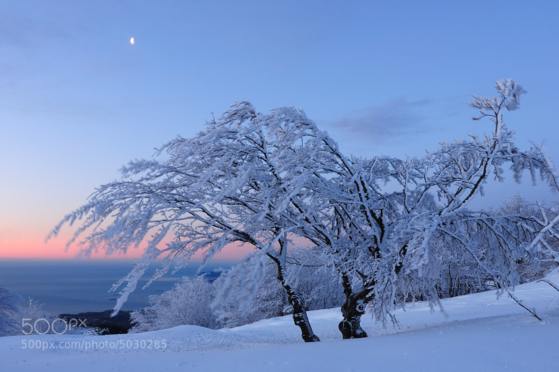 Photograph Between sea, mountains and snow. by Max Lucotti on 500px
