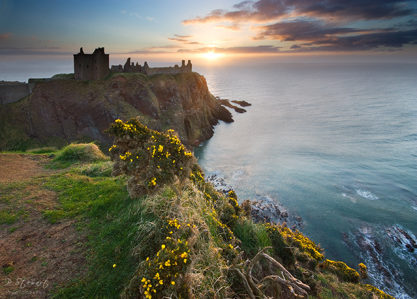 Photograph Dunnottar Gorse by Philip Stewart on 500px