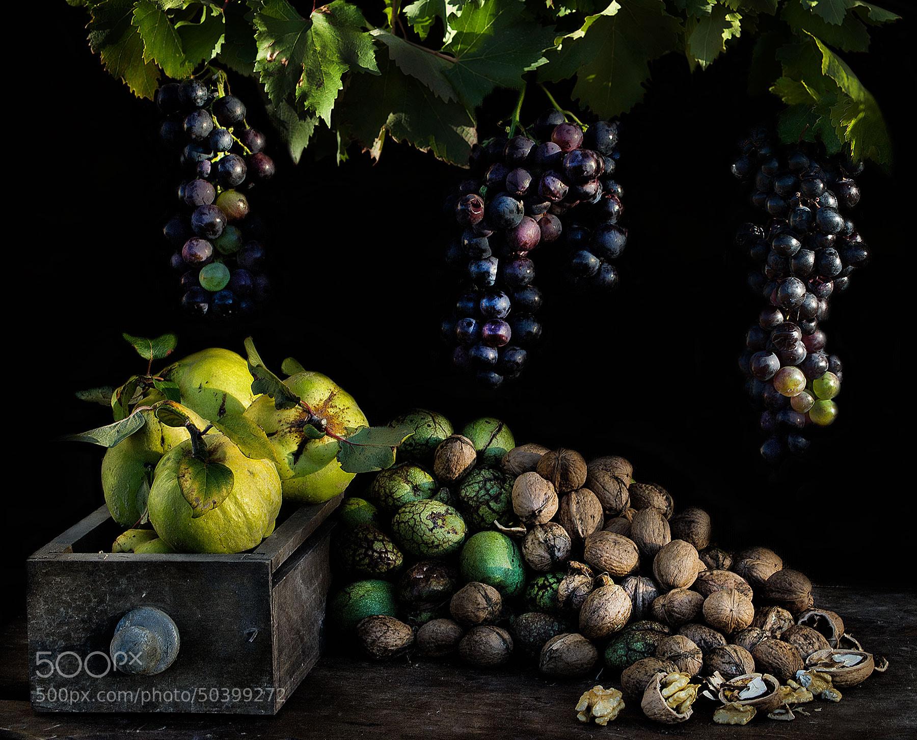Photograph My treasure by Marta Borreguero on 500px