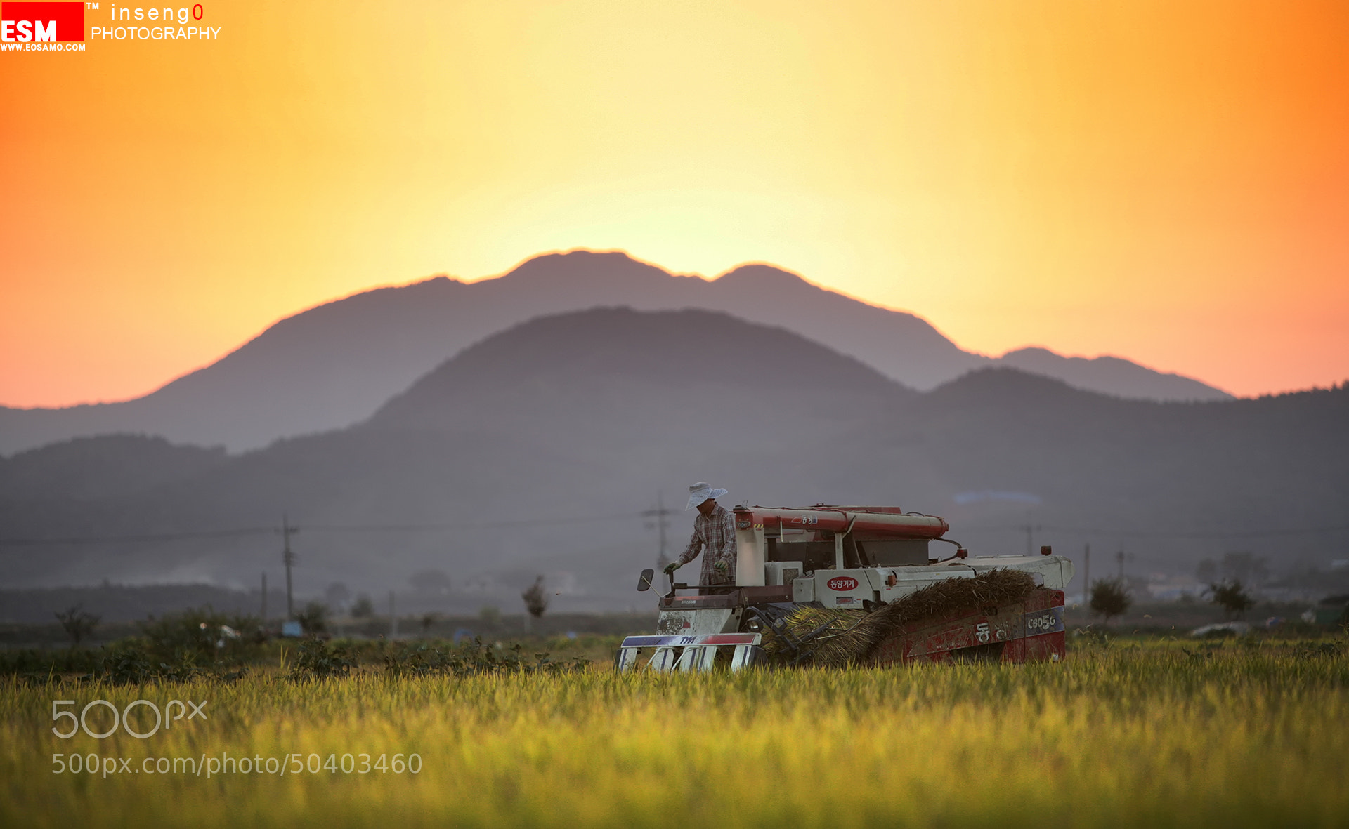 Photograph harvest by chan-wook Kim on 500px