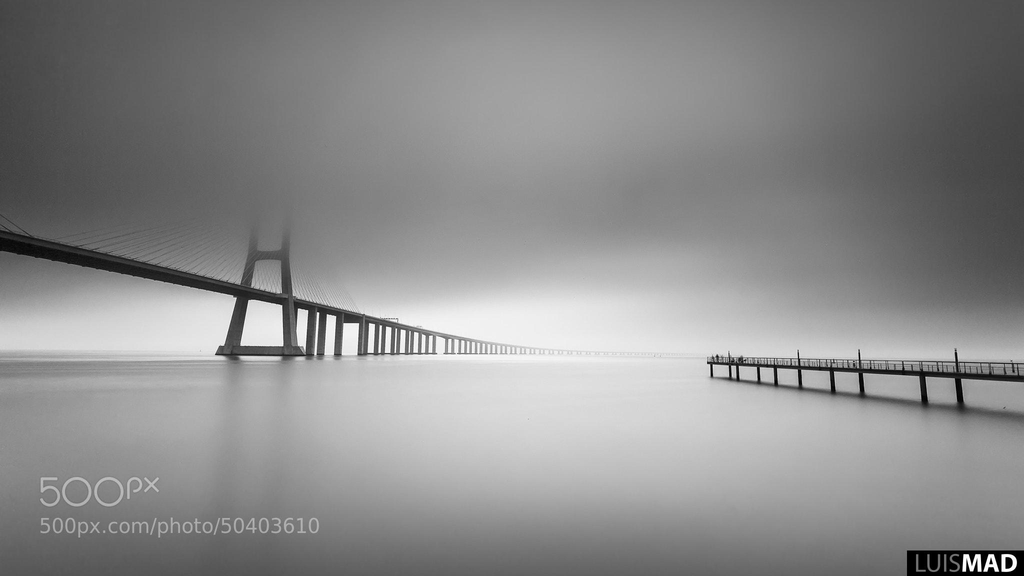 Photograph Foggy Day @ Vasco da Gama Bridge by luismad  on 500px