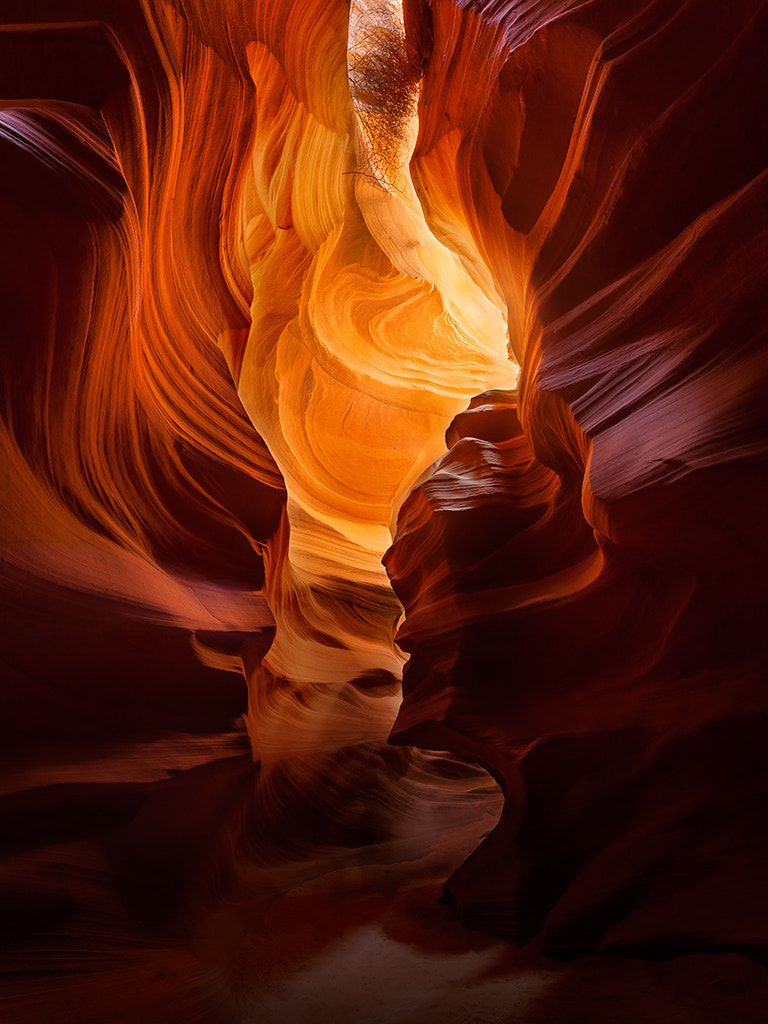 Photograph The Glow by Dylan Fox on 500px