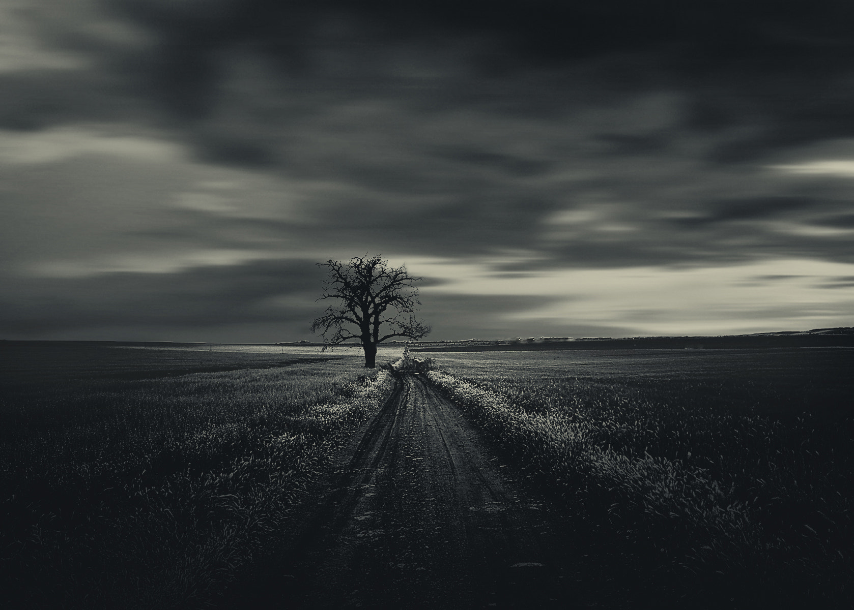 Photograph One in field by Roman Trudowoi on 500px