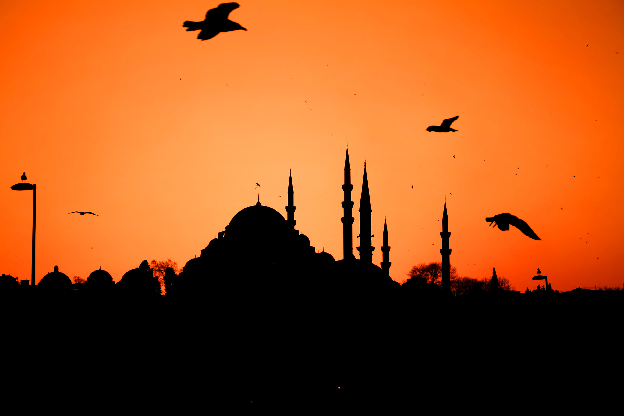 Photograph Istanbul by Şafak Engin on 500px