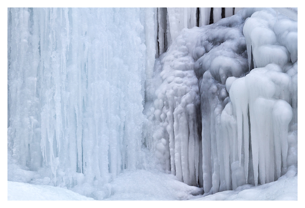 Photograph Ice by Jessica B on 500px