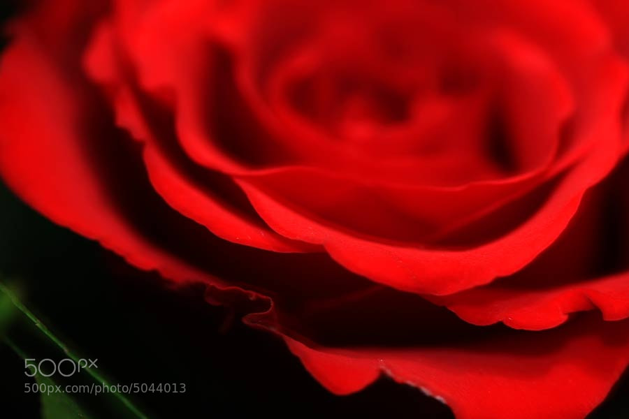 Photograph happy v -day by Tamara L. on 500px