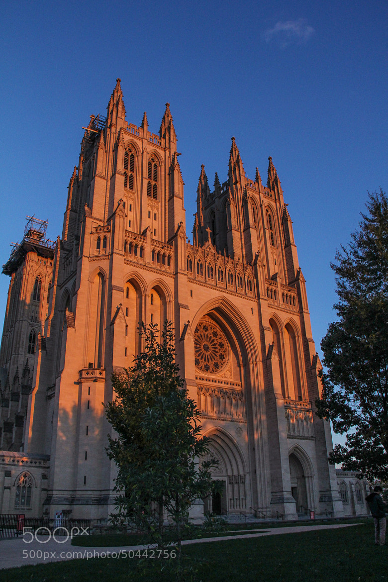 Photograph The National Cathedral At Sunset by Andy Operchuck on 500px