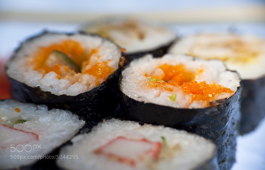Macro Maki by Jay Scott (jayscottphotography) on 500px.com