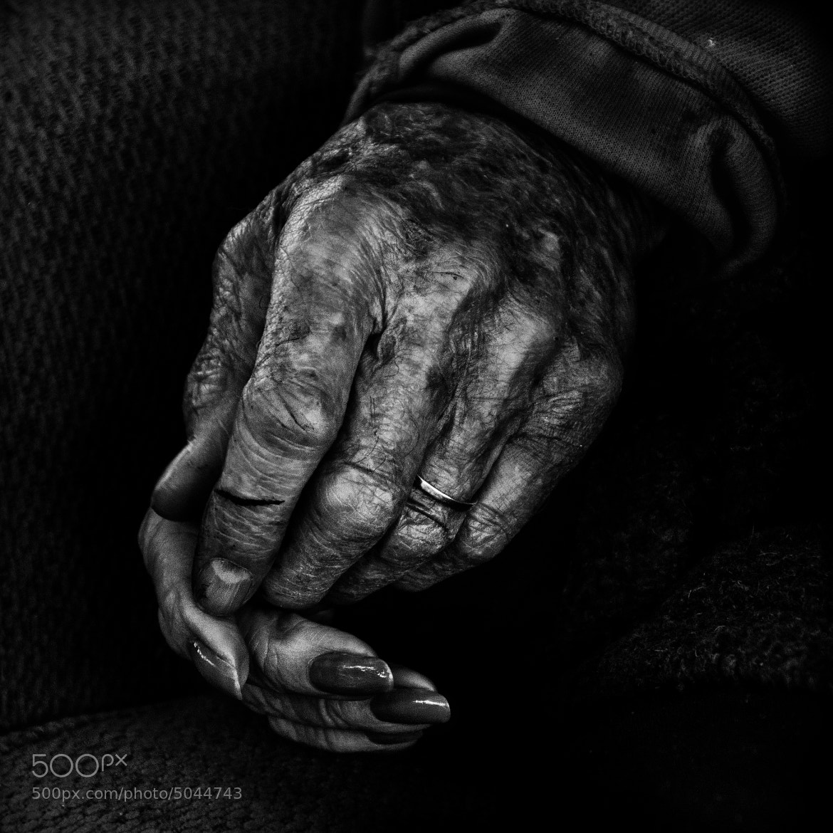 Photograph True Love Never Grows Old by Betina La Plante on 500px