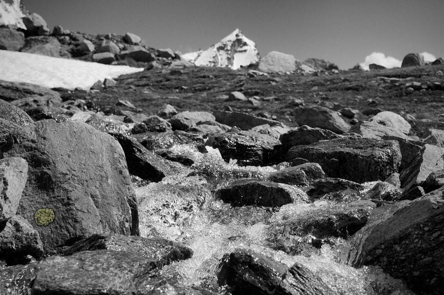 Flow down the Gran Paradiso mountain