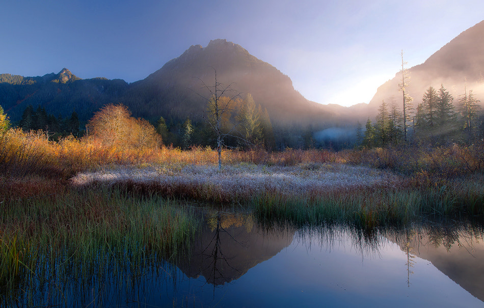 Photograph Fog Entangles the Light by Trevor Anderson on 500px