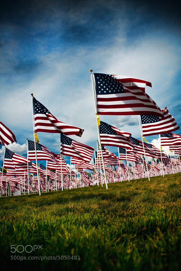 Merrill Park  hosts 600 full-size flags in honor of American veterans and those currently serving in the military.