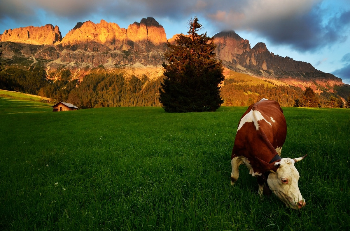 Photograph In Shadow Of Dolomites by Peter Kováč on 500px