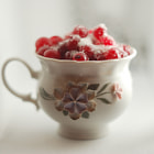 Постер, плакат: cranberry in sugar