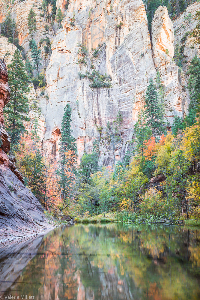 Photograph Autumn In The Canyon by Valerie Millett on 500px