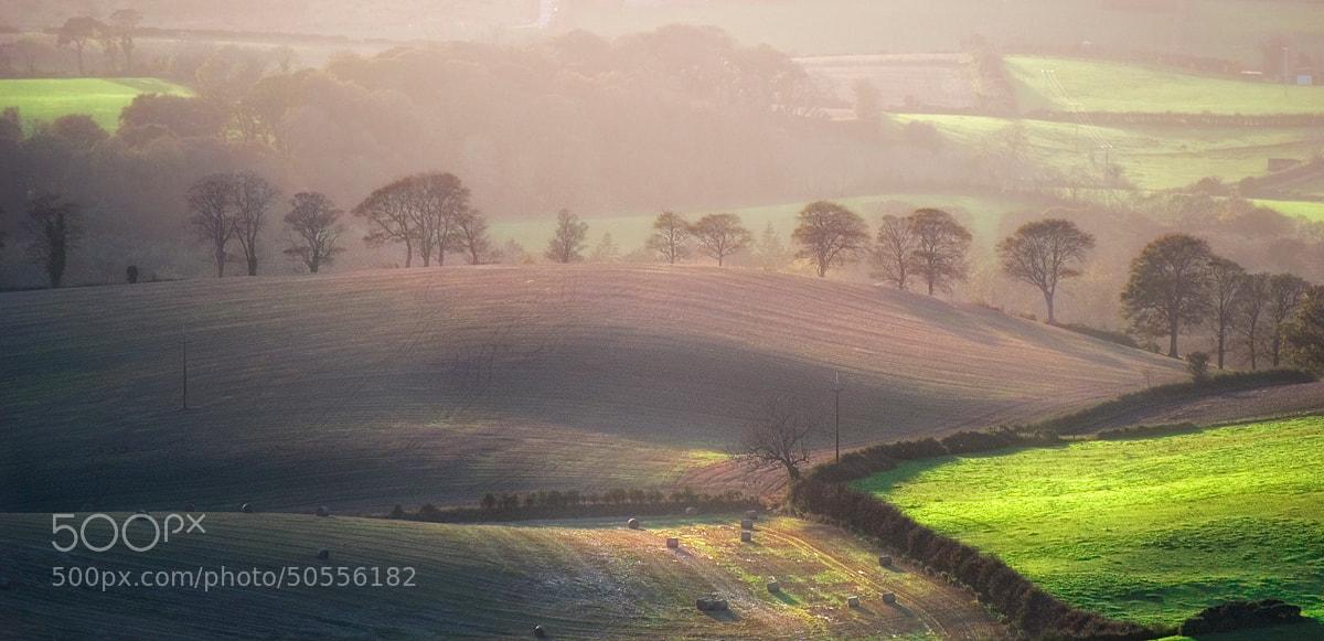 Photograph Irish fields in autumn by Lukasz Maksymiuk on 500px