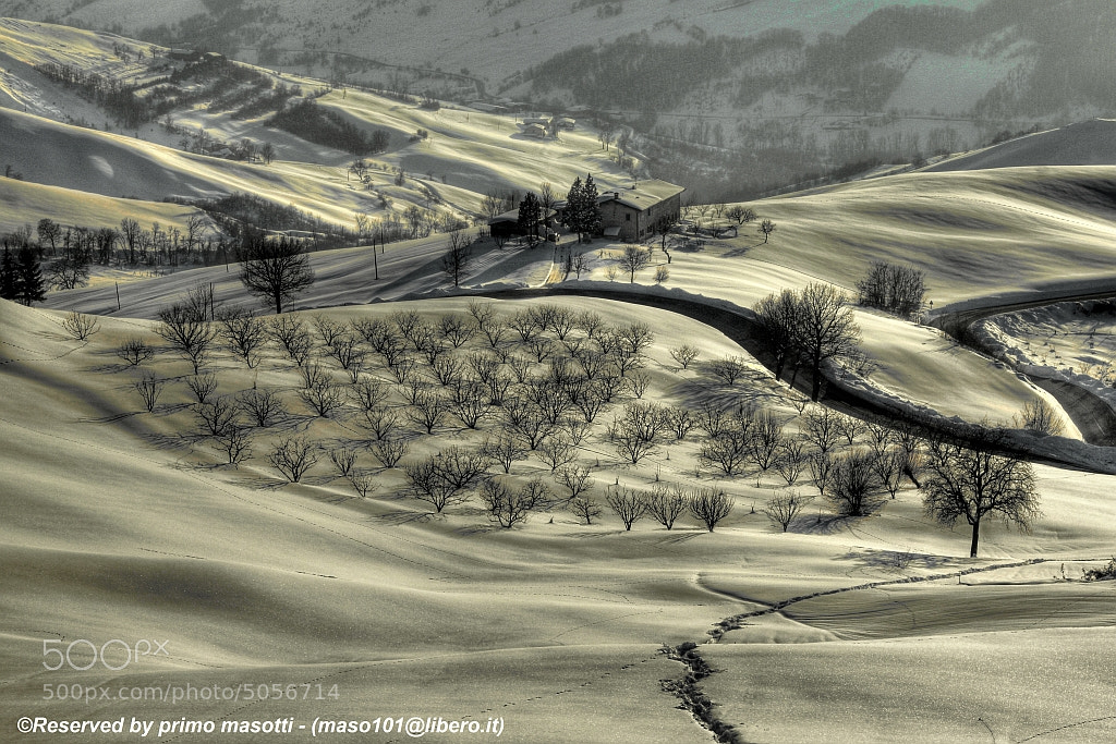 Photograph it is evening down in my soft valley - Samone (guiglia modena italy)_0444__DVD 14 by primo masotti on 500px