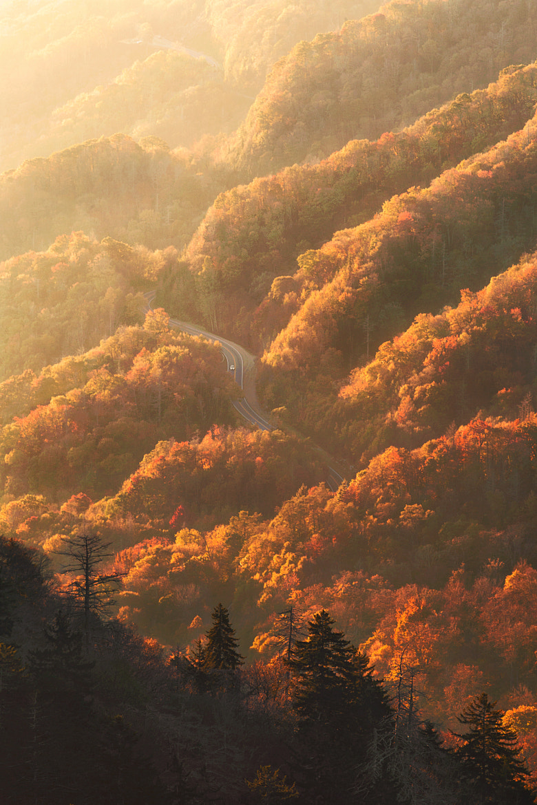 Photograph Smokies Sunrise by Jesse Summers on 500px