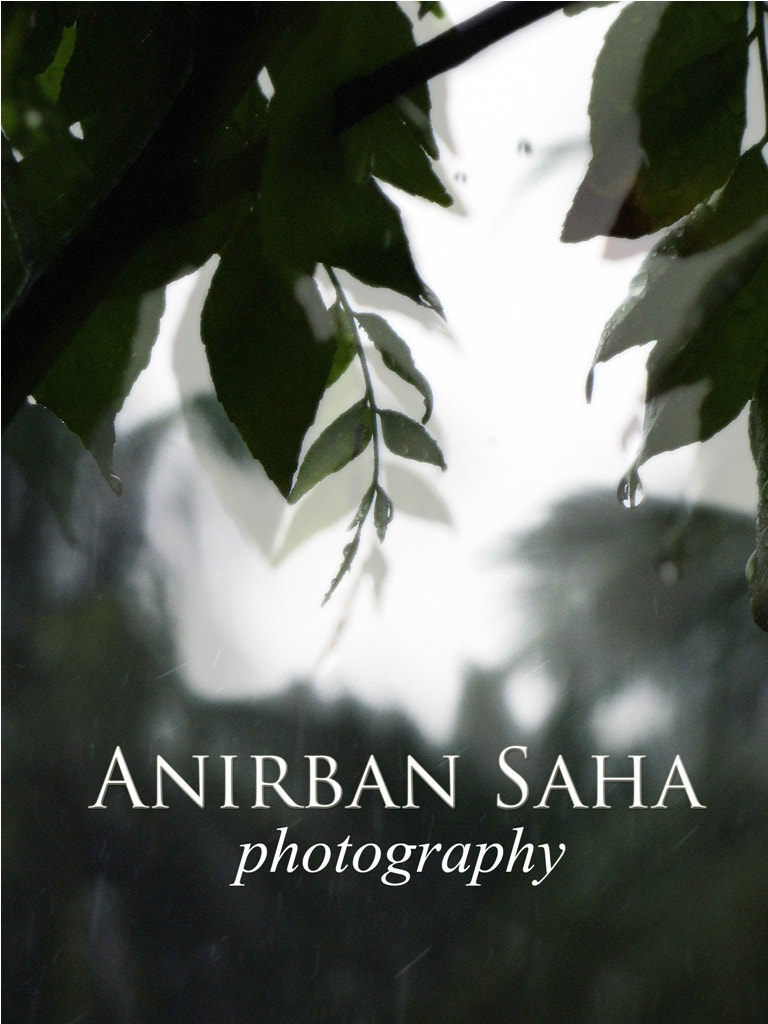 Photograph Anirban Saha Photography (Monsoon Profile Picture) by Anirban Saha on 500px