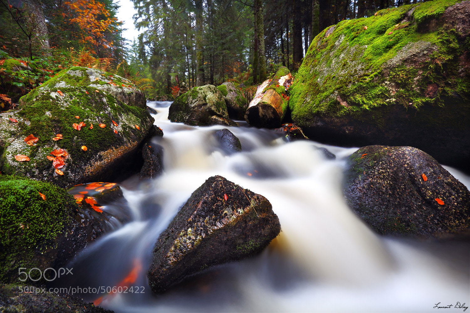 Photograph Autumnal River by Laurent DELCEY on 500px