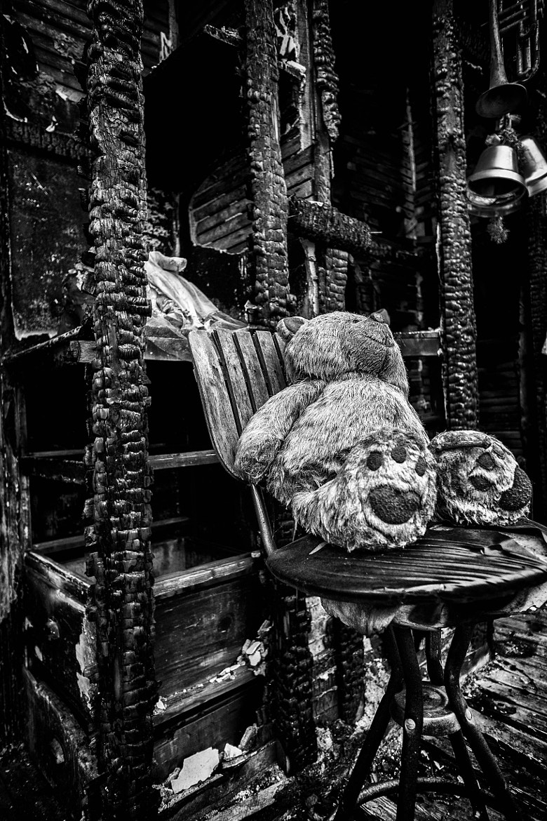 Photograph Project Heidelberg - Missing bear by skamelone on 500px
