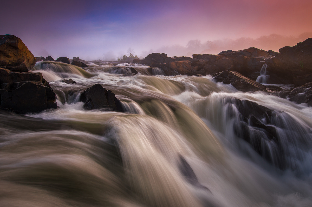 Photograph Stomping Grounds by Alex Mody on 500px