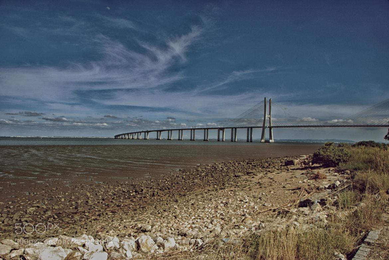 Photograph Ponte Vasco da Gama by Dario Partenope on 500px