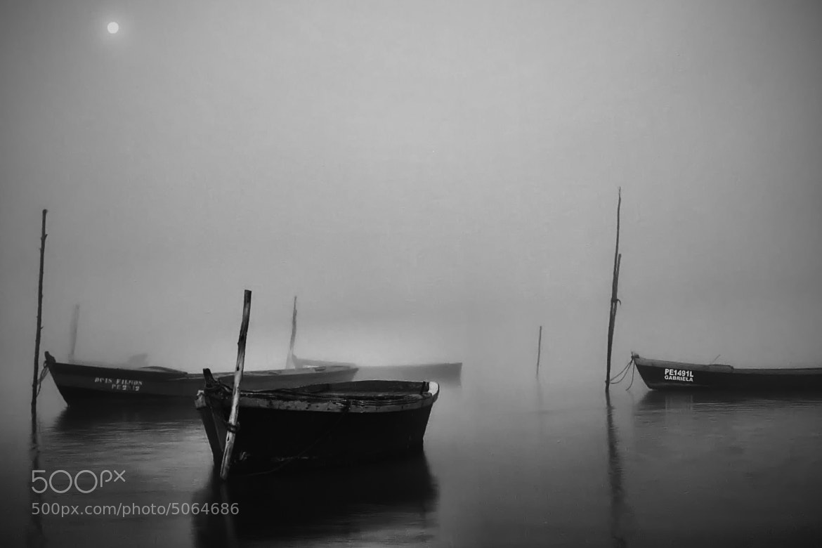 Photograph Morning moments #3 by joaocarlo   on 500px