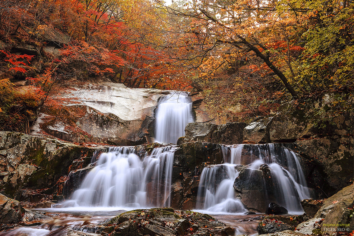 Photograph waterfall in Autumn #3 by Tiger Seo on 500px