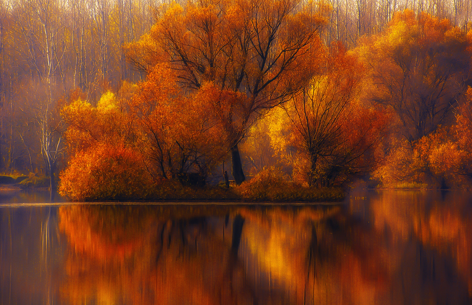 Photograph autumn clothes by Andy 58 on 500px
