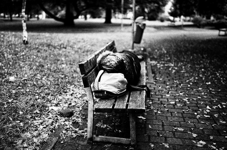 Photograph Parco della stazione by Filiberto Maida on 500px