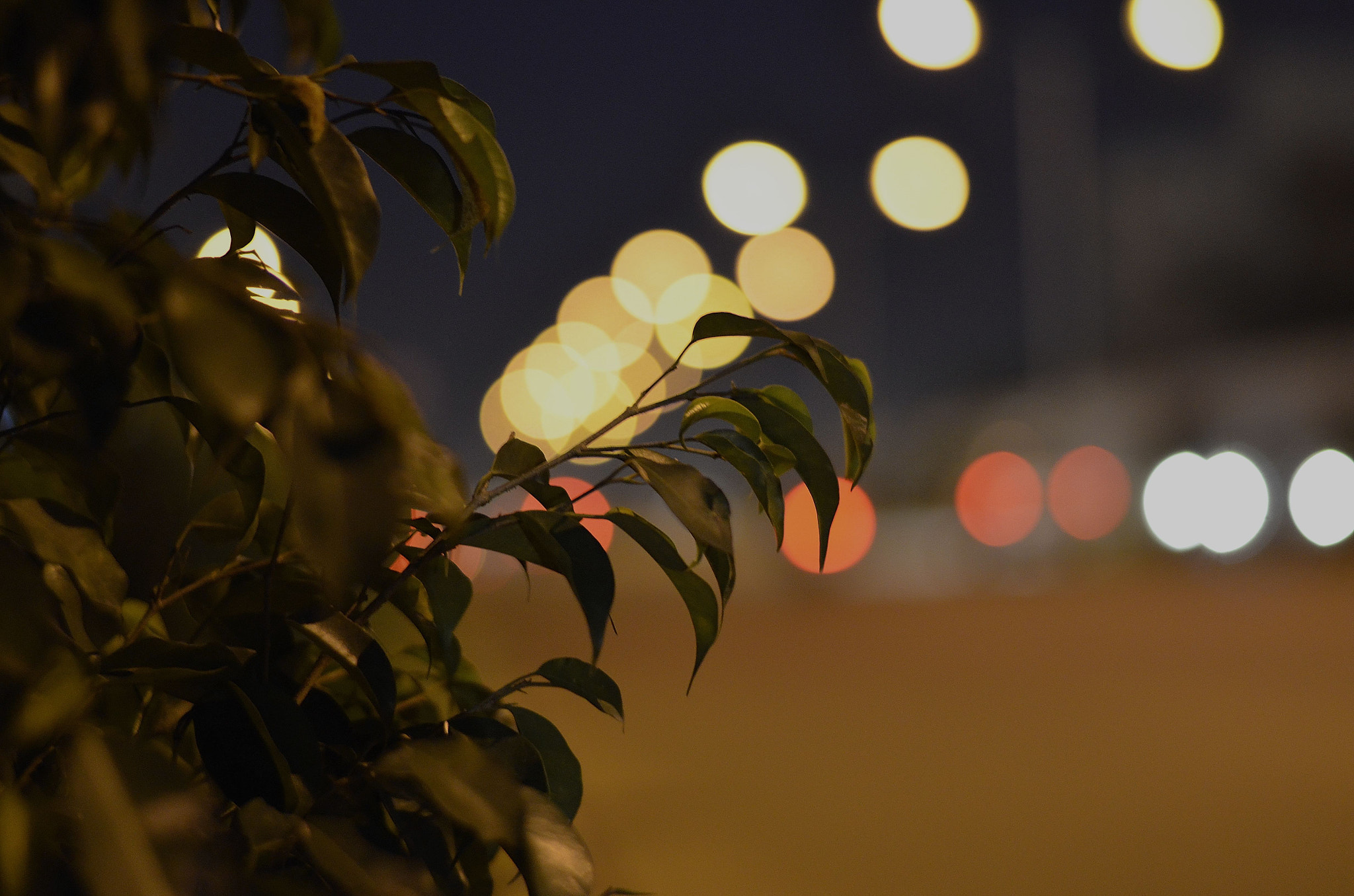 Photograph Light Night by Dr. Sujeeth Kumar on 500px