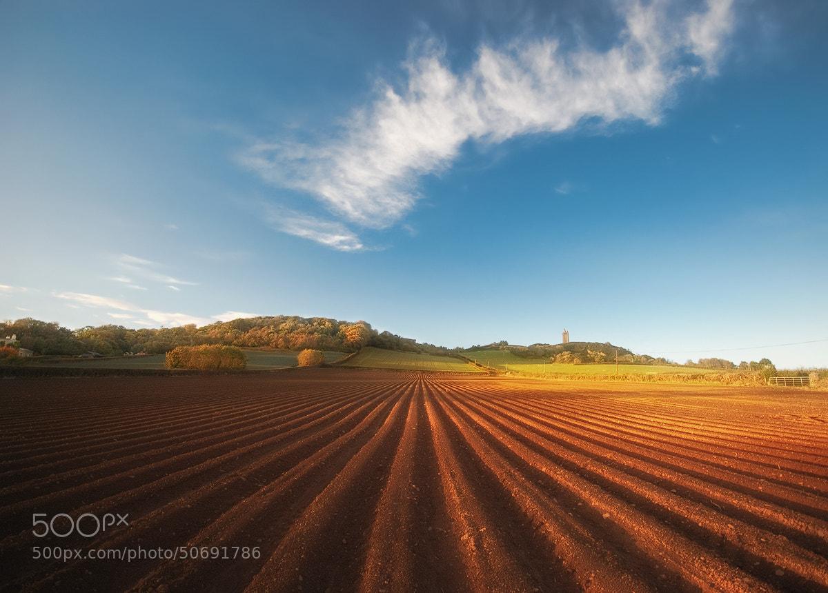 Photograph Art of farming by Lukasz Maksymiuk on 500px