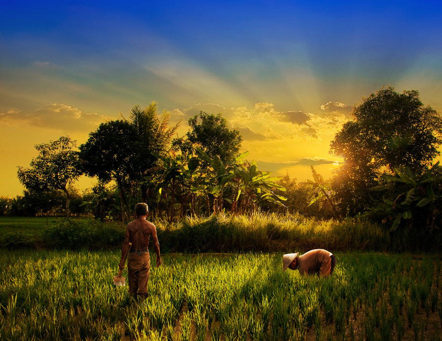 Photograph The Farmers by Ketut Manik on 500px