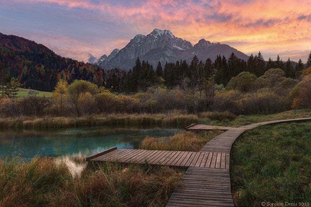 Photograph Zelenci by Denis Sorokin on 500px