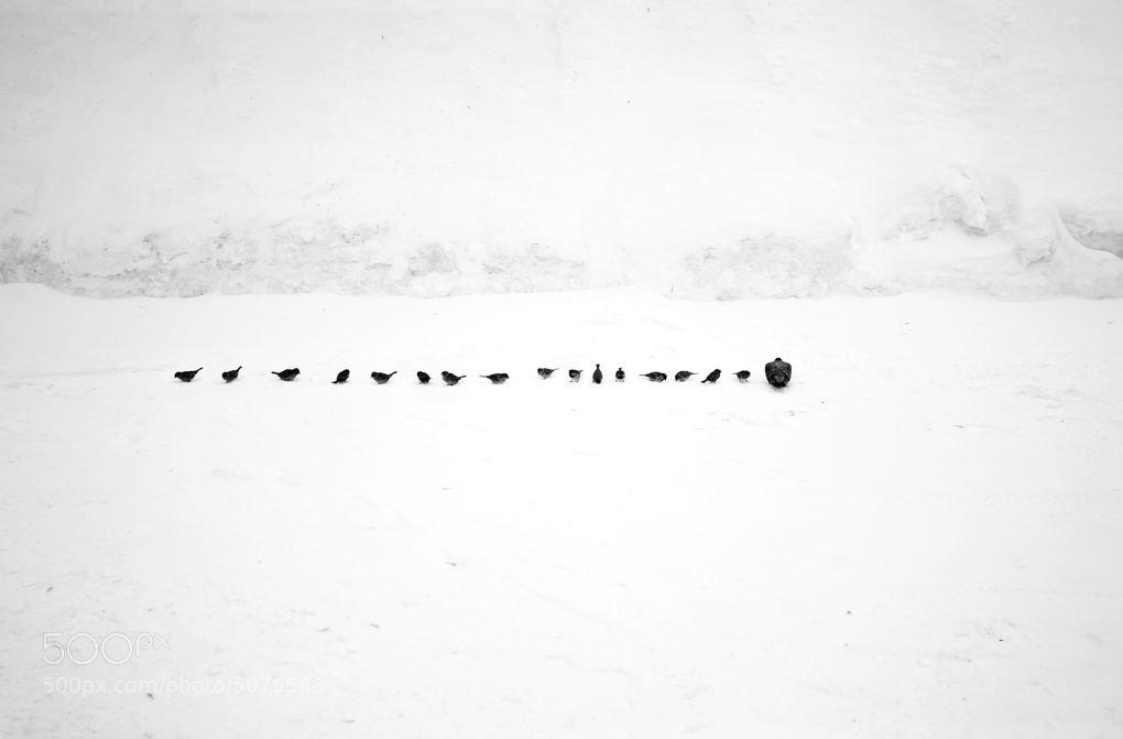 Photograph многоточие by Alexey Menschikov on 500px