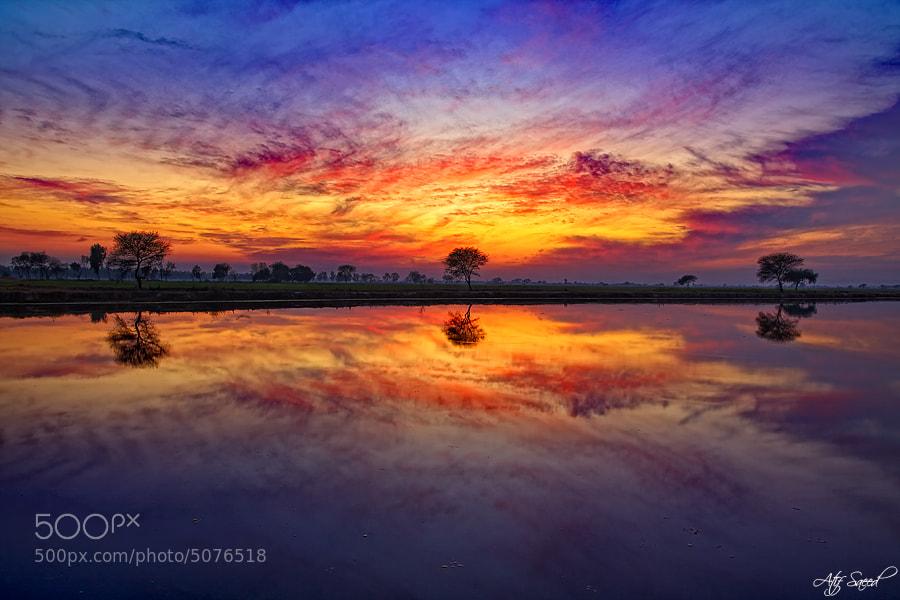 Photograph Metallic Sunset.. by Atif Saeed on 500px