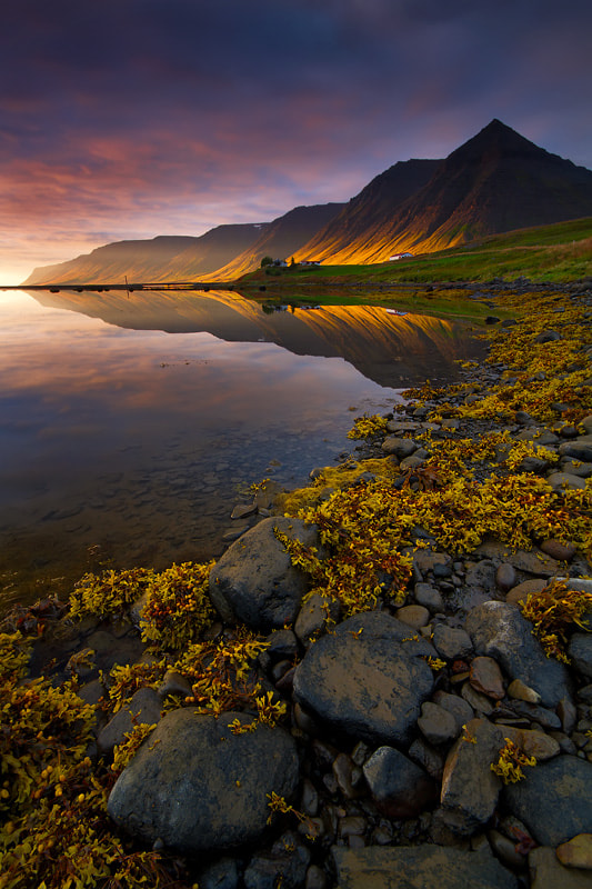 Photograph Evening in the Fjords by Dylan Toh  & Marianne Lim on 500px