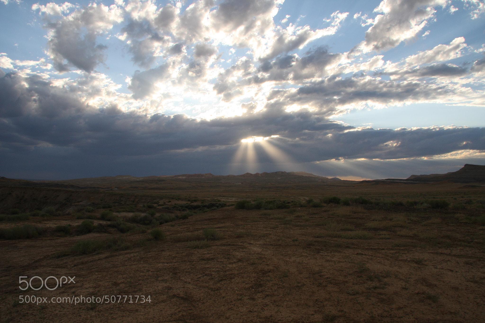 Photograph Beautiful Nature by Tashina van Zwam on 500px