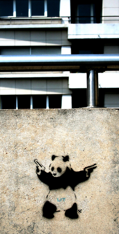Photograph Psycho Panda by landro on 500px