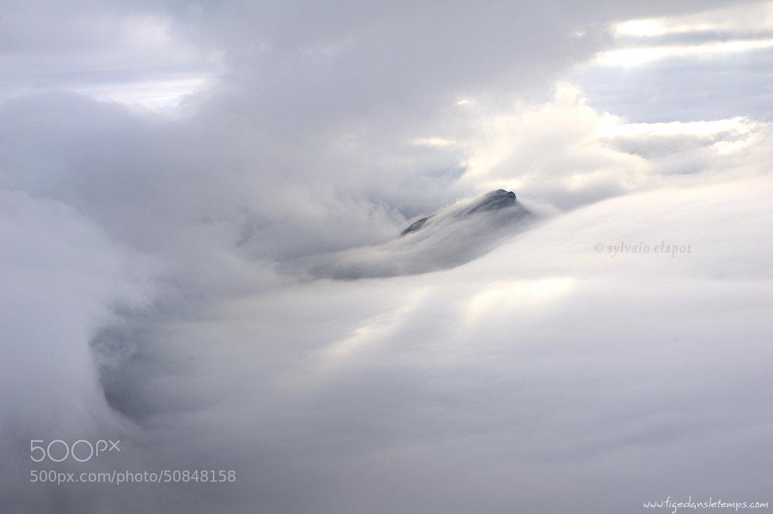 Photograph Dans la tourmente... by Sylvain Clapot on 500px
