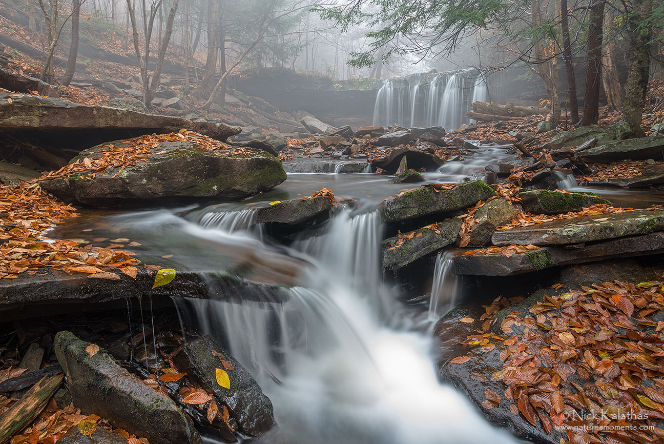 Photograph The Feel of Fall by Nick Kalathas - Nature's Moments on 500px