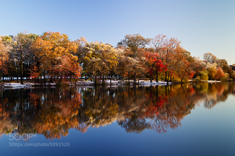 Photograph Reflecting on Fall by Dave Rogers on 500px