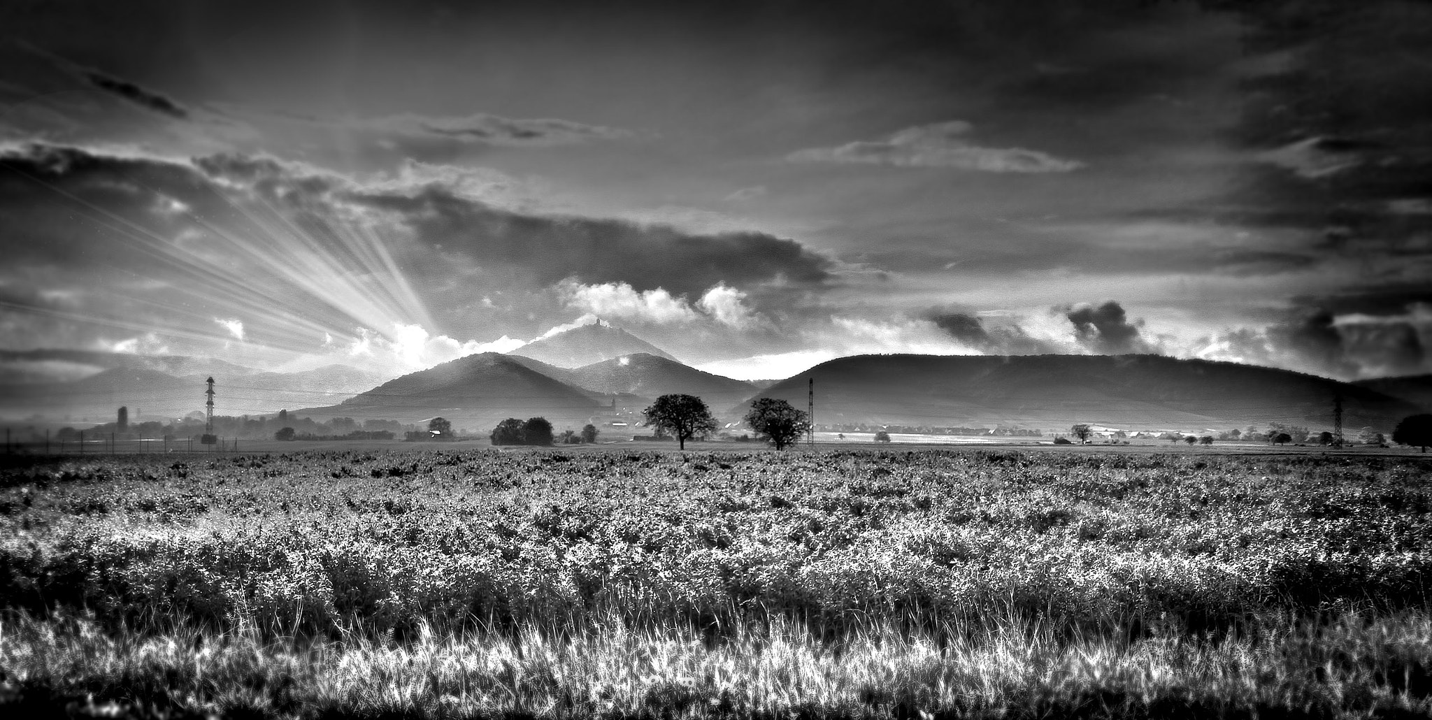 Photograph B&W landscape by landro on 500px