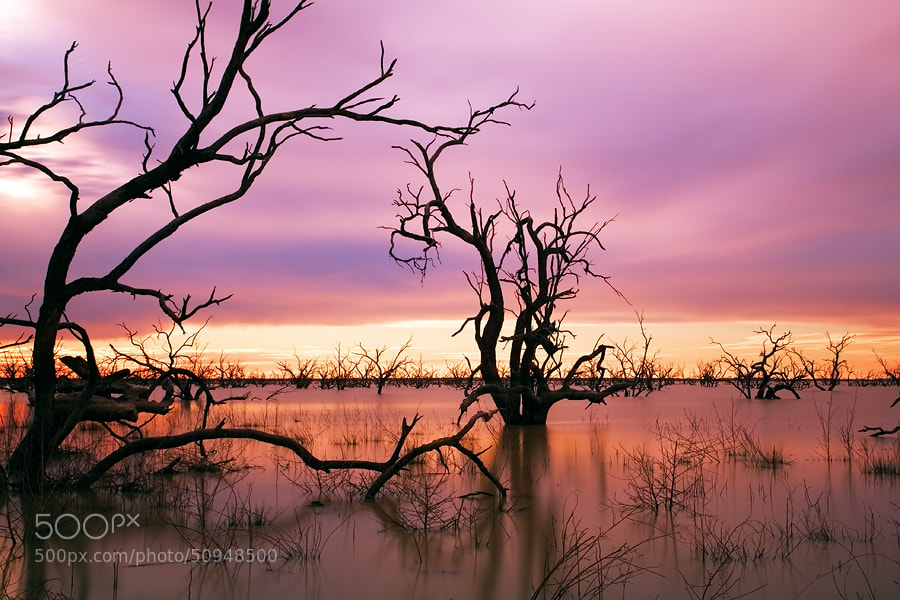 Photograph Sunset at Menindee Lakes, Outback NSW Australia by Yury Prokopenko on 500px
