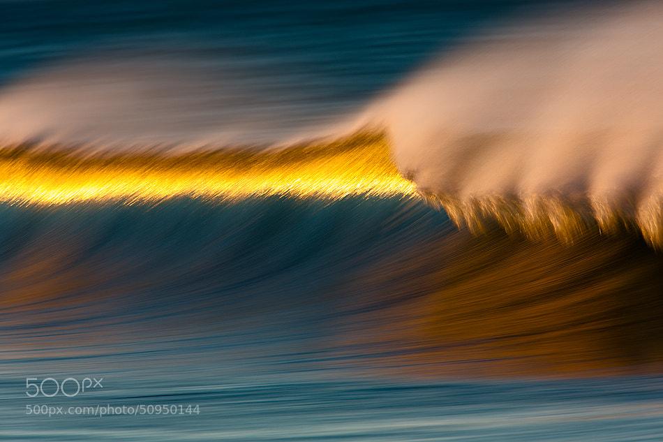 Photograph 73A2720 Golden Strip by David Orias on 500px