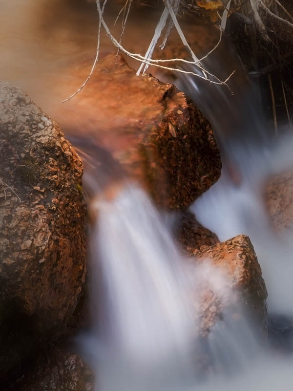 Photograph Under The Branches by Bill Stone on 500px