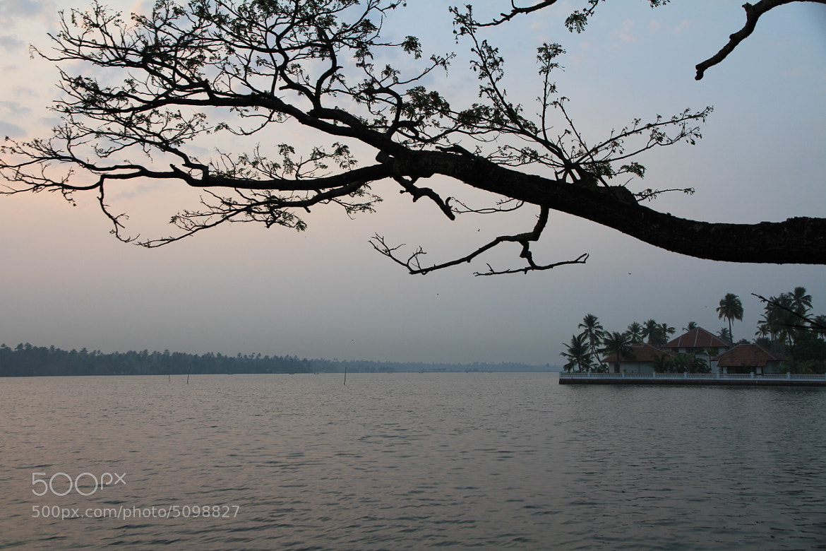 Photograph Kerala 2 by Sharat Chandra Petloju on 500px