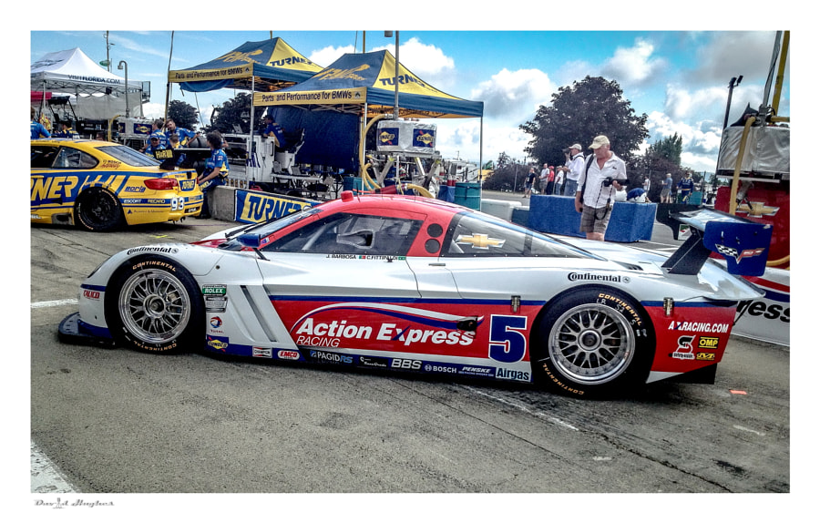 2013 Action Express Corvette DP